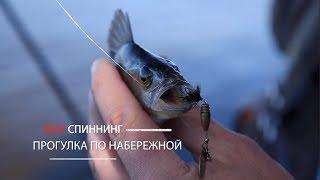 Рыбалка спиннингом в ялте на набережной