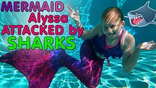 Sharks Attack Mermaid Alyssa!!