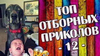 ПРИКОЛЫ 2019 Топ Отборных Приколов #12 │Ржака Юмор Угар Joke Humor│