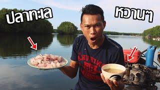 กินปลาดิบ บนเกาะกลางทะเล โคตรแซ่บ!! - dooclip.me