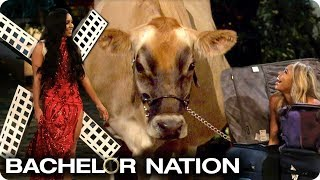Who Made The Best Entrance? 🐮✈️🧳 | The Bachelor