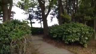 京浜島つばさ公園のイメージ