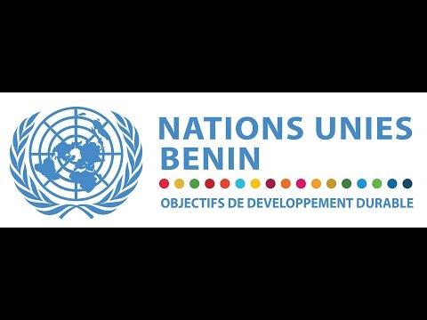 L'UNDAF 2014 -2018, LE SYSTÈME DES NATIONS UNIES A L' ŒUVRE AU BÉNIN