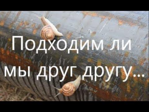 Гороскоп для мужчины рыба на декабрь 2016