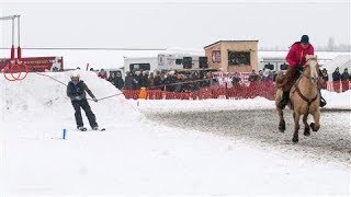 Skijoring: The Wildest Winter Sport You