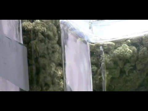 Marijuana dispensary debate in Warren continues