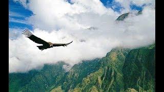 Deejay-jany - El Condor Pasa 2017 (tropical remix)