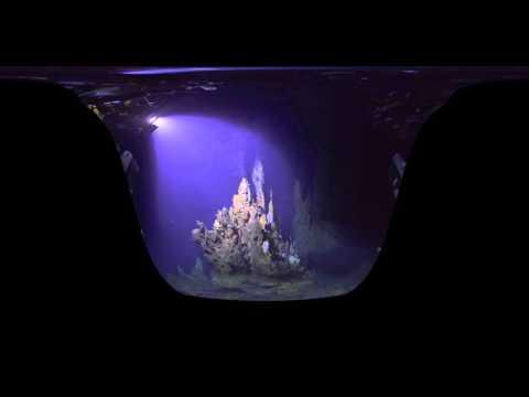 เทคโนโลยี Virtual Reality สามารถพาคุณสำรวจใต้ทะเลลึกได้แล้ว