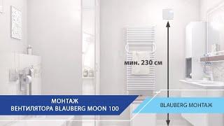 Blauberg Moon 100