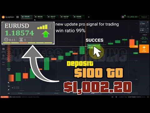 Prekybos strategijos nepastoviose rinkose