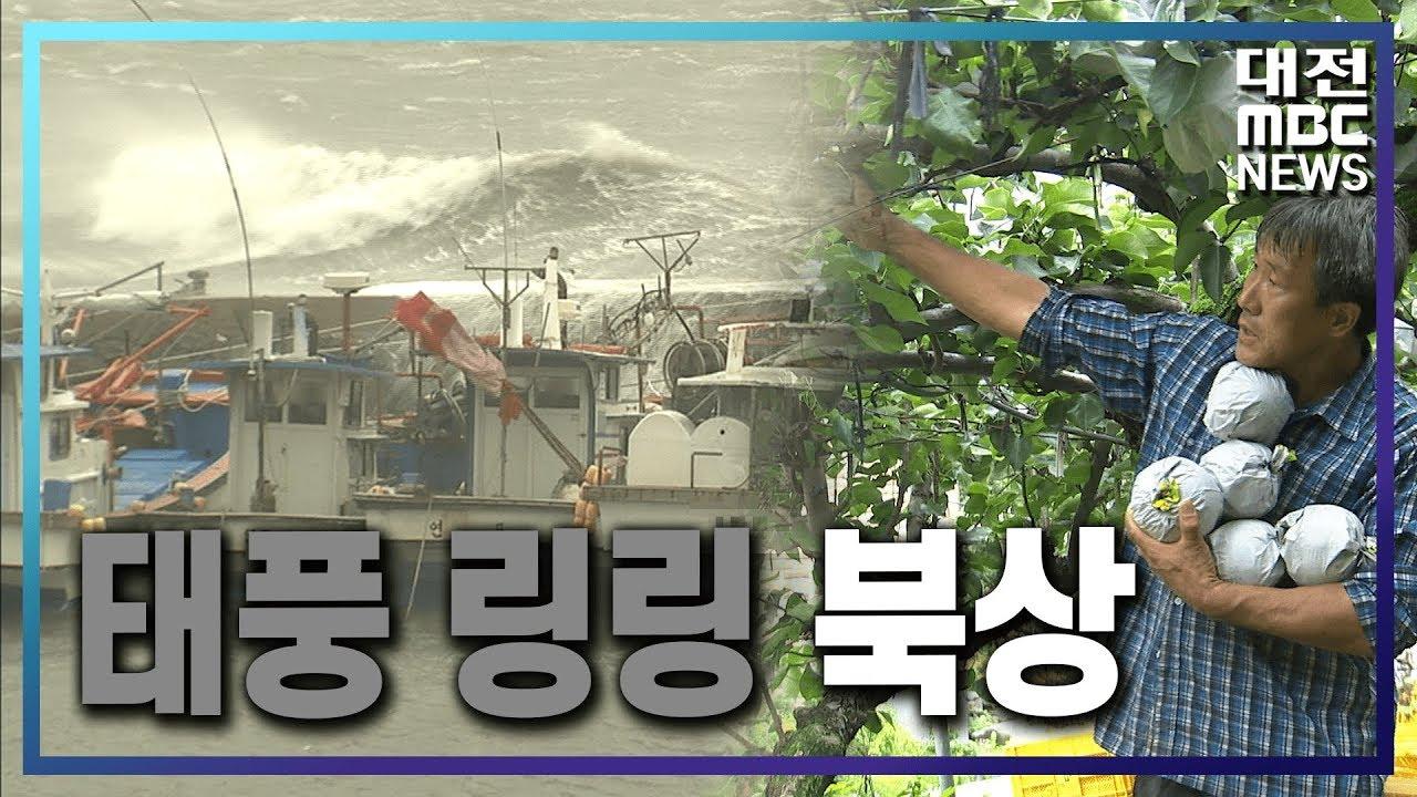 [리포트]집중호우…태풍 '링링' 북상