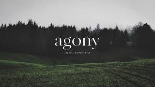 """BTS (방탄소년단) """"Agony (Euphoria Depressed Ver.)""""   Piano Cover"""