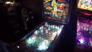 Whoa Nellie pinball gameplay