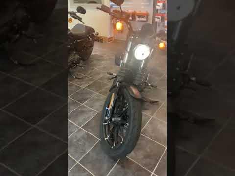 2020 Harley-Davidson Iron 883™ in Scott, Louisiana - Video 1