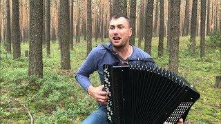 "БАЯНИСТ РВЁТ ДУШУ Хит группы ""Король и Шут"" -  Лесник на баяне"