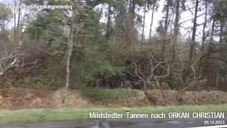 preview picture of video 'Der Tag nach ORKAN Christian: Großflächig entwaldet'