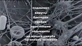 Аппарат физиотерапевтический «БИОМЕДИС М» от компании ИП Поляк В. Б.  УНП 192535193 - видео 1