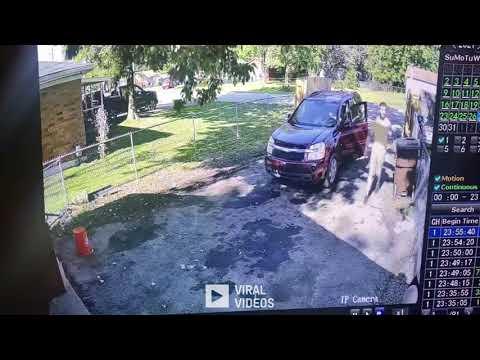 سقوط شجرة عملاقة ونجاة طفل بأعجوبة... فيديو
