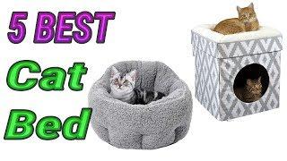 5 Best Cat Beds 2020