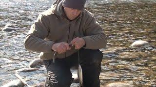 Абаканский клуб рыболов залив сыда
