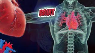 Bruit (Human Heart ❤️ & Cardiology) ❤️🔊✅ (Human Heart ❤️ & Cardiology) ❤️🔊✅