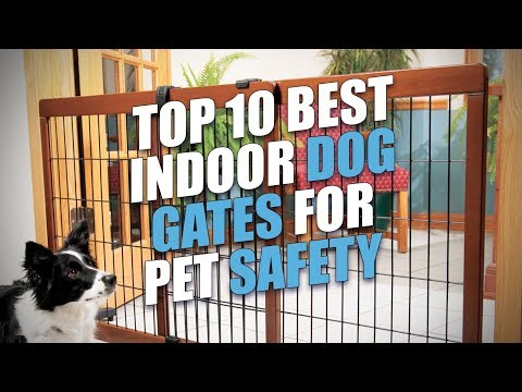 Top 10 Best Indoor Dog Gates For Pet Safety
