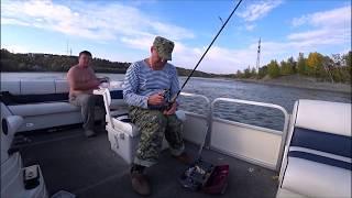 Рыбалка на река обь в алтайском крае