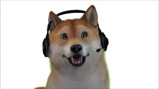 doge face reveal - Video hài mới full hd hay nhất - ClipVL net
