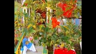 Main Tere Bina Kamli Hoi Punjabi Bhente