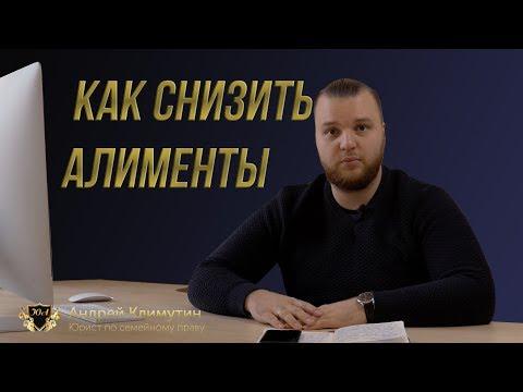 КАК СНИЗИТЬ СУММУ АЛИМЕНТОВ? | Семейный Юрист в Томске