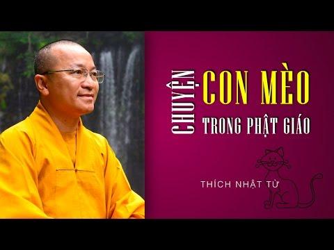 Chuyện con mèo trong Phật giáo (03 & 04/02/2011)
