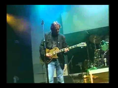 Snowy White - Working Blues (live)