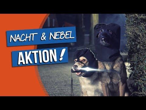"bosch   Fruitees - Der fruchtige Hundesnack #3 ""Nacht & Nebel Aktion!"""
