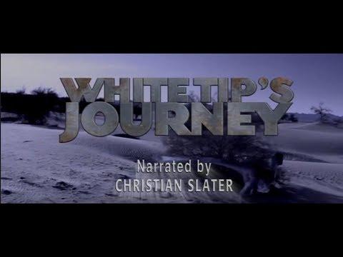 Dinosaur Planet: White Tip's Journey