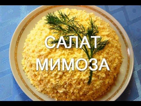 Салат Мимоза. Простые рецепты салатов