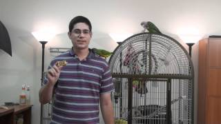 Parrot Clicker Contest Winners