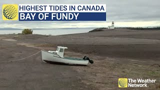 Canada's highest tides in the world perfect for renewable energy