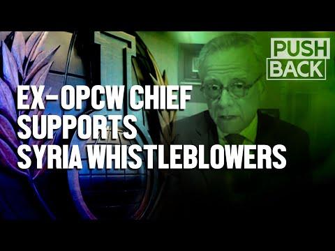 Ex-OPCW chief criticizes US pressure, sidelining of veteran inspectors in Syria probe