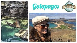 The Healthy Voyager Galapagos