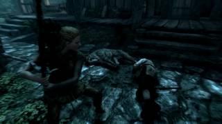The Elder Scrolls 5: Skyrim ..быть вором талант, ) но противозаконно...))