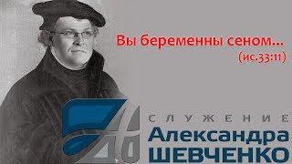 Алекс Шевченко - реформатор беременный сеном