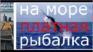 Морская рыбалка геленджик