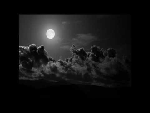 Significato della canzone L'animale di Franco Battiato