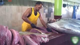 Những pha cắt cá bá đạo