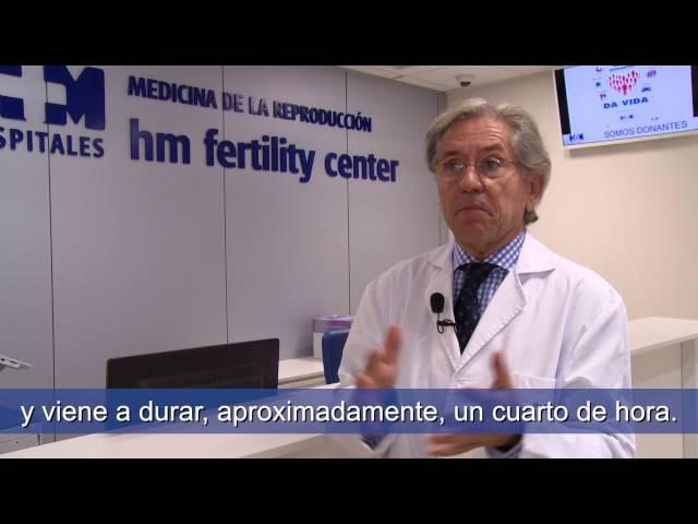 Seguridad y eficacia de los tratamientos de FIV-ICSI - Isidoro Bruna Catalán