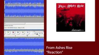 "Anti-Flag Spit in the Face Plagiarism STOLE ""Reaction"" by From Ashes Rise"