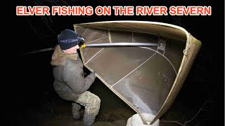 Beneath the Waterline: River Severn Eels (Part 1 of 5)