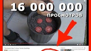 САМОЕ ПОПУЛЯРНОЕ ВИДЕО на youtube В АМЕРИКЕ / Мы такого ТОЧНО не видели / THE MOST POPULAR VIDEO