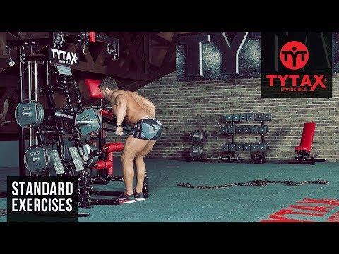 Lever Bent-Over Row | TYTAX® M2