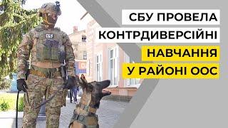 На Луганщині СБУ провела контрдиверсійні навчання у районі ООС